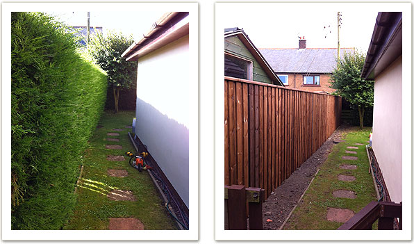 Hedge removal and fencing